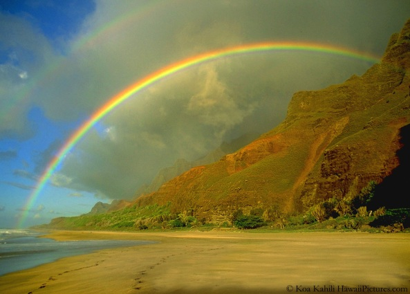 hawaii-rainbow